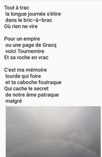 sonnet 2601.JPG