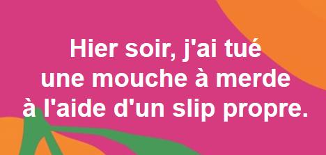 mouche.PNG